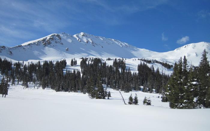 colorado ski authority scholarship essays